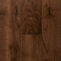 Walnut Nature 15527